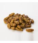 Pupas gusanos de seda 25 g